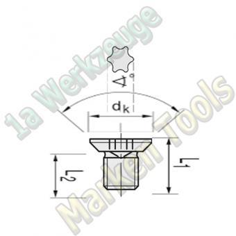 T15 Torx-Schraube 90°  M5 x5,5mm dk=9mm L1=7mm 10 Stück